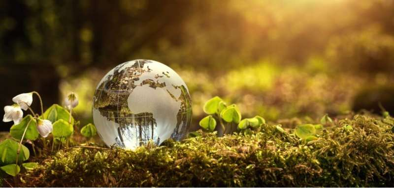 Natural climate change solutions highly effective in the long term